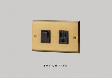 黃銅面板日式指撥1開附接地單插(國際牌)