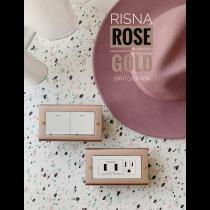 玫瑰金國際牌RISNA全系列框架